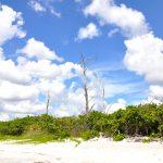 Natur und Strand kann hier in vollen Zügen genossen werden.